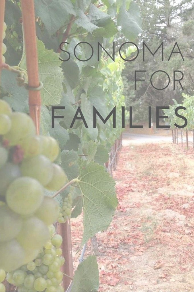 Sonoma wine country for families: Activities for kids