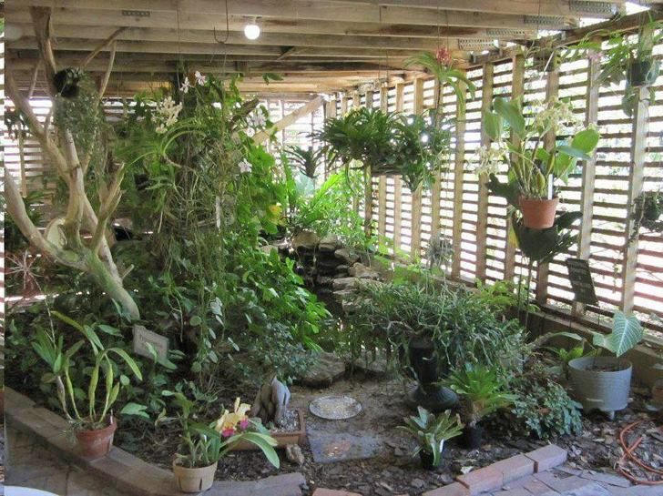 Best 25 Florida Botanical Gardens Ideas Only On Pinterest