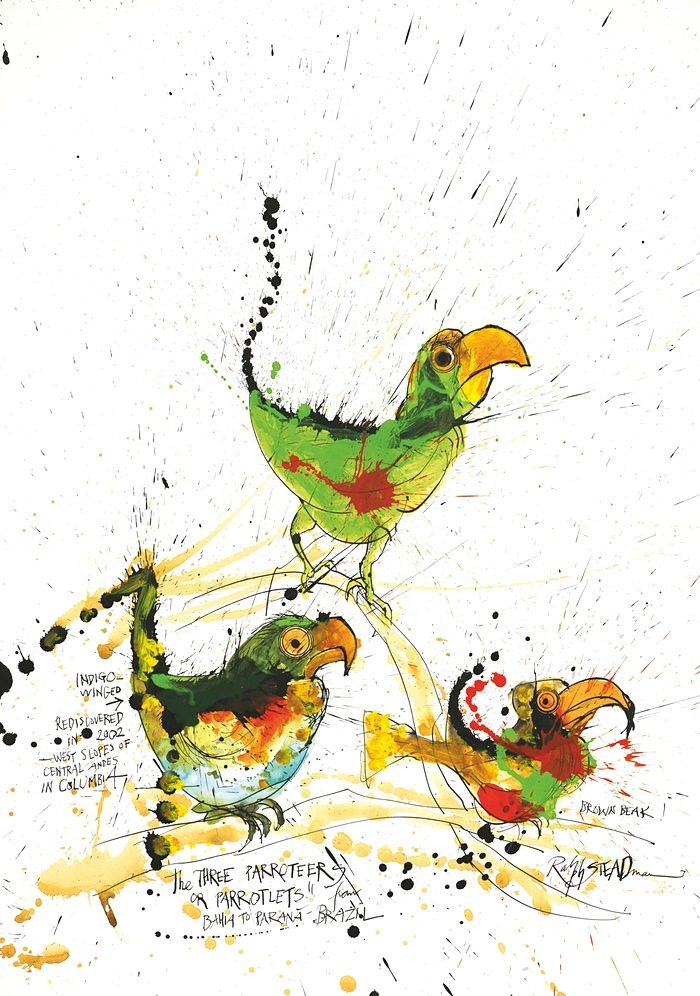 Ralph Steadman's birds on the edge of extinction – in pictures