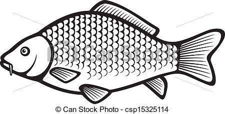 Vector Clip Art of Carp fish Common carp csp15325114 - Search ...