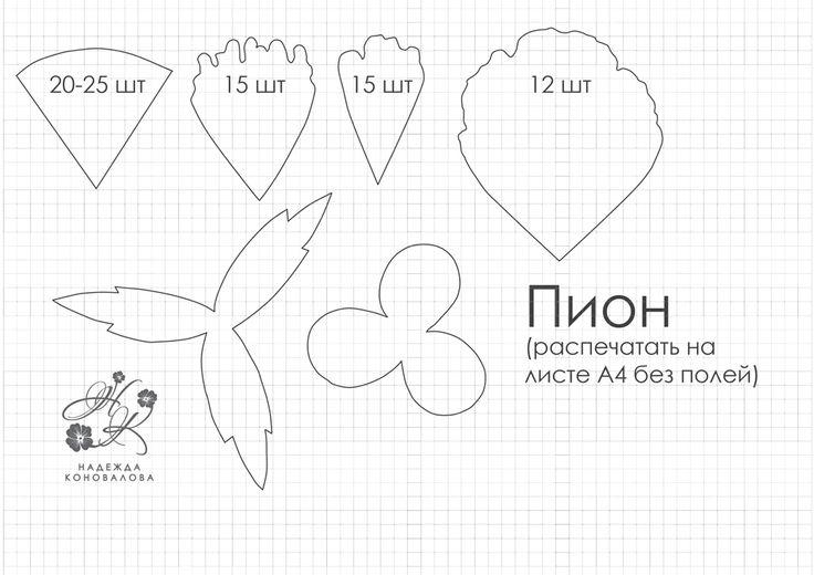 шаблоны пиона из фоамирана распечатать: 8 тыс изображений найдено в Яндекс.Картинках