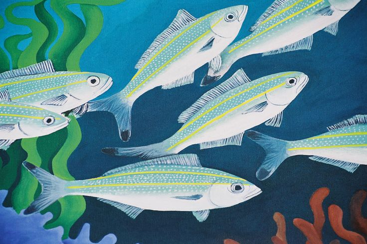 This image of a school of black tipped fusilier fish is one of the series of fish paintings celebrated in this microsite of art by Mandy Evans