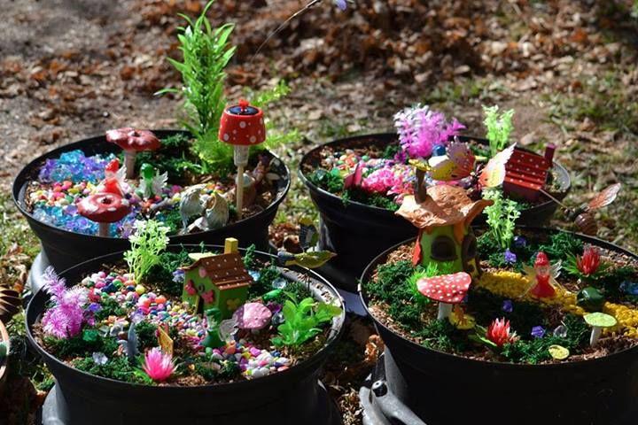 Gnome Garden: Plant Pot Fairy Gardens From Aberdeen Preschool Assoc Inc