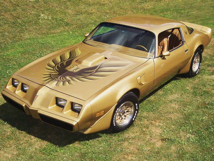 "1979 Pontiac Trans Am...OK now I'm geeking out.  Muscle car and ""Smokey & the Bandit""!!!"