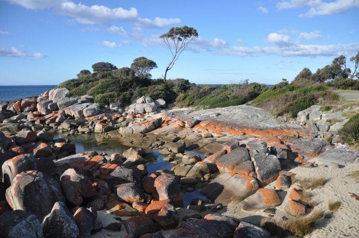 A 10,000 Mile Journey to Home & Happiness in Tasmania, via Vrai Magazine