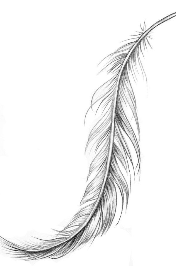 feather | Tattoo Ideas Central