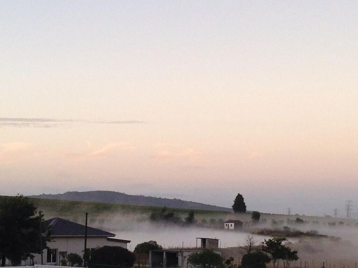 Dawn over our Bottlery property. Day of pressing Pinotage ahead.