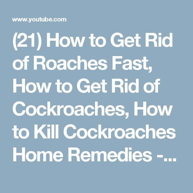 best 25 roach remedies ideas on pinterest roaches cockroach repellent and roach killer. Black Bedroom Furniture Sets. Home Design Ideas