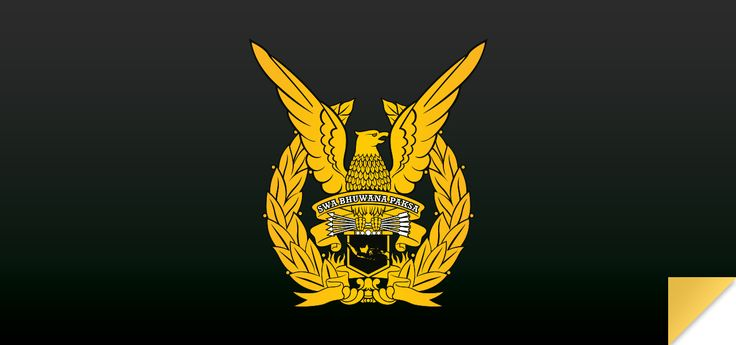 logo TNI-AU_Indonesian Air Force