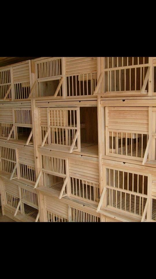 Pin by Chicken Coops on chicken coops | Pinterest ...