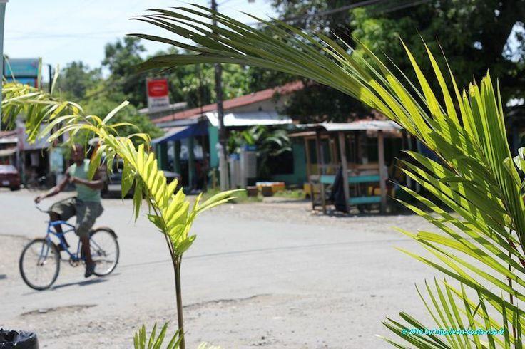 Cliquez ici pour découvrir le charme de vie de Cahuita, petit village du Costa Rica qui se trouve tout au sud de la côte caraïbe, près de la frontière du Panama...