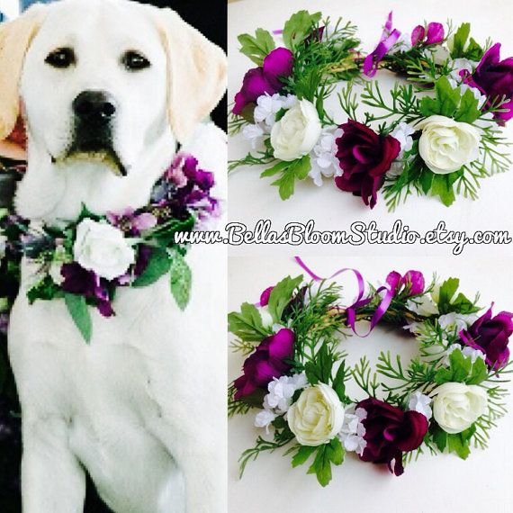 28 best DOG COLLAR BOWS FLOWERS images on Pinterest | Dog wedding ...