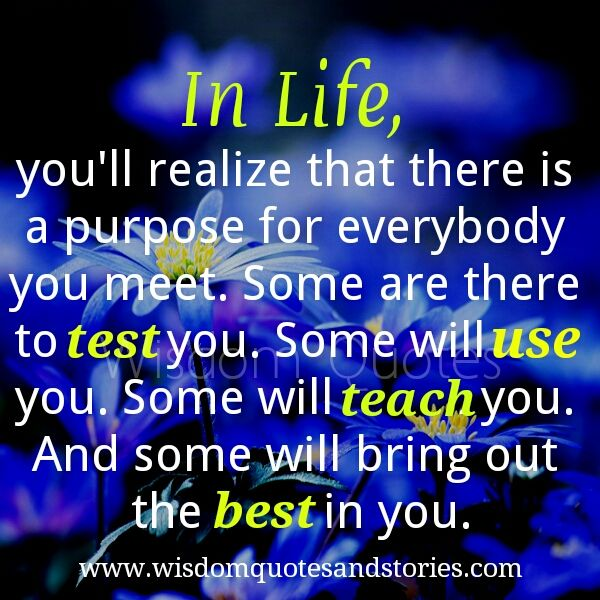 in life you ll realize that there is a purpose for everybody meet