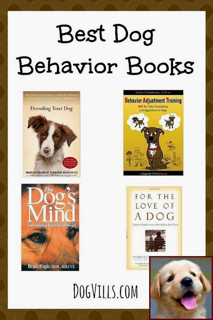 1 Have Dog Behavior Problems Learn About House Training A Puppy Through The Night And Dog Behavior Gender Dog Behavior Behavior Books Easiest Dogs To Train