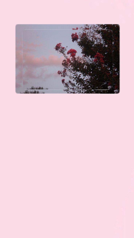İphone Wallpaper  for more > Pinterest ; esina1