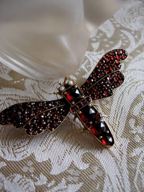 Victorian Bohemian Garnet Brooch - Rich Red Garnets and Small pearl eyes comprise this beautiful insect brooch. Set in Garnet Gold, The wing span is appx 1 3/4 inches and the body is approximately 1 inch long.
