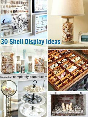 30 Sea Shell Display Ideas! Featured on Completely Coastal: http://www.completely-coastal.com/2013/02/seashell-collection.html A hand picked seashell collection celebrates the sea and tells your story.