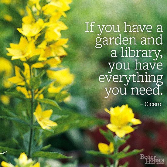 """If you have a garden and a library, you have everything you need."" -Cicero  More garden quotes: http://www.bhg.com/gardening/garden-quotes/#page=6"