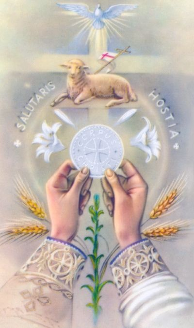 Behold the Lamb of God who takes away the sins of the world.