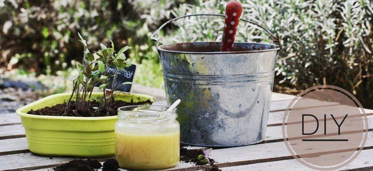 Net zoals vroeger slaat I ♥Eco met Iris van Druantia de handen in elkaar om jullie weer te voorzien van heerlijke DIY-recepten voor de beste verzorgings- en schoonheidsproducten. Ik ben dan ook wat trots jullie ons eerste gezamenlijke projectje te tonen: tuinierszeep. Zoals jullie misschien …