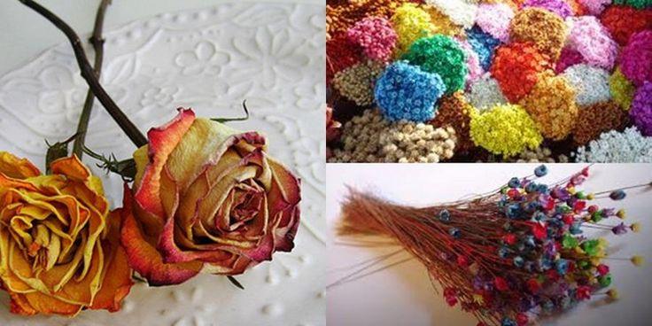 Como secar flores con glicerina  - http://www.manualidadeson.com/como-secar-flores-con-glicerina.html