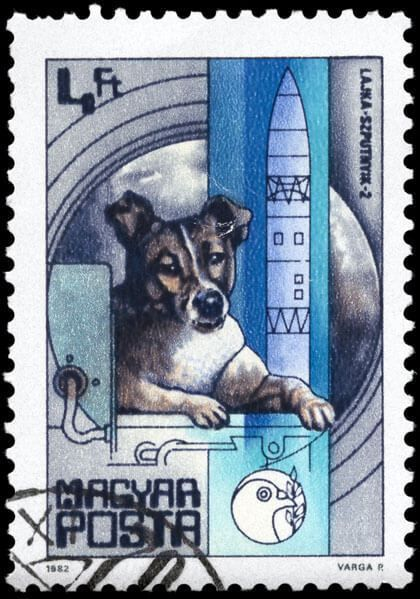 Laika postage stamp... Laika, the first dog in space.