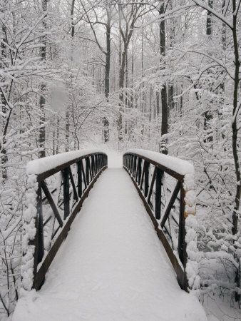 Wonderful snow covered bridge!