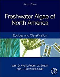 What is alga? Algae Definition - Eat Algae