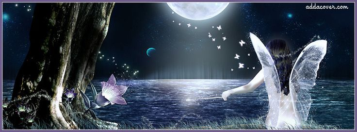 Lonely Fairy Facebook Cover