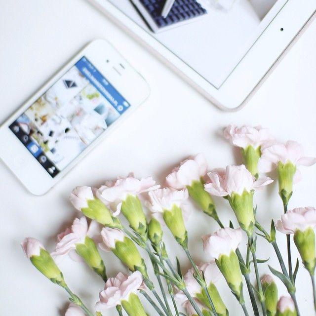 Cześć i czołem!  Na blogu za i przeciw używania imienia i nazwiska jako nazwy swojego bloga - zapraszam  #goodmorning #flowers #lifestyle #photography #blog #kwiaty #dekoracje #dzieńdobry