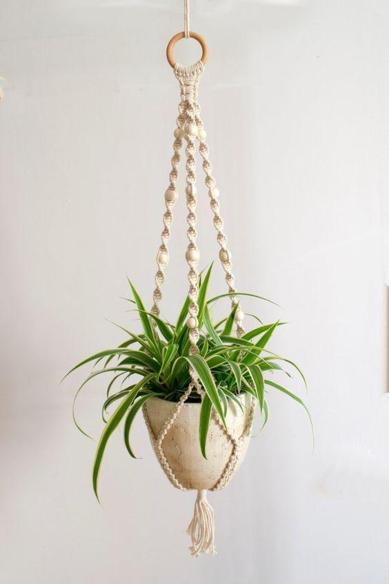 13 best 18 estupendas ideas para colgar tus plantas images for Ideas para colgar plantas