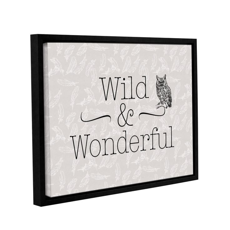 ArtWall Tara Moss's 'Wild and Wonderful Feathers' Gallery Wrapped Floater-framed Canvas