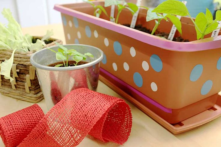 Alter Blumenkasten in neuem Look: DIY-Gartengestaltung. #Upcycling