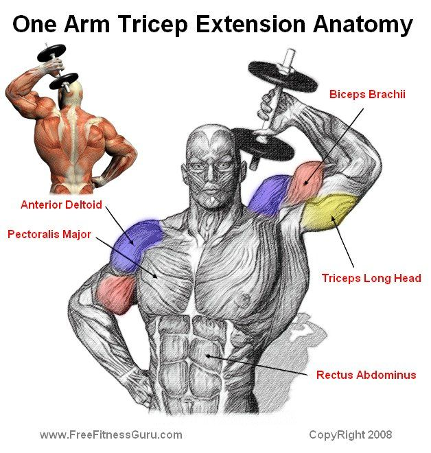 Standing one arm tricep extensions-- when done correctly this exercise will give your triceps a real boost in every direction.