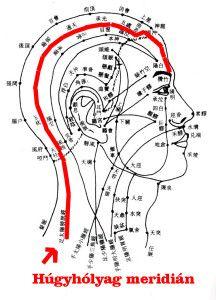A kínai egészségmegőrzés fegyvere: a fésű Dr. Yu hagyományos kínai orvosi rendelője - Akupunktúra| Egészség | Hagyományos kínai gyógyászat | Alternatív gyógymódok | Kínai gyógynövények