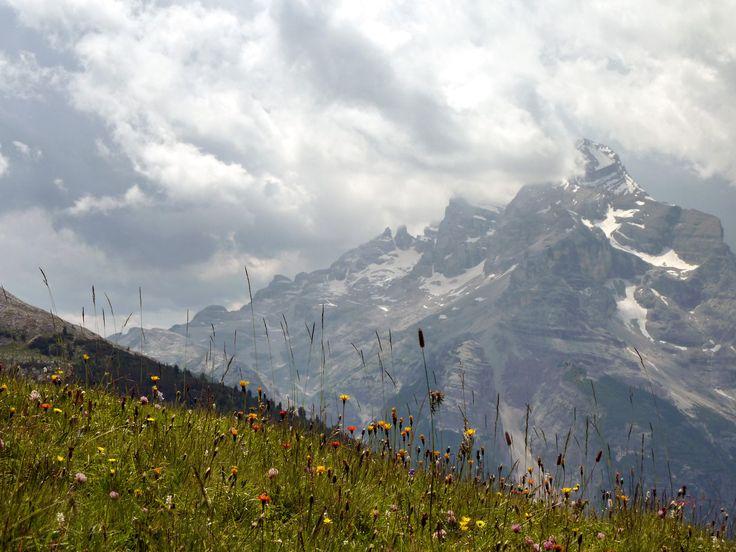 La Tofana di Dentro vista dai Prati dell'Alpe Lerosa.