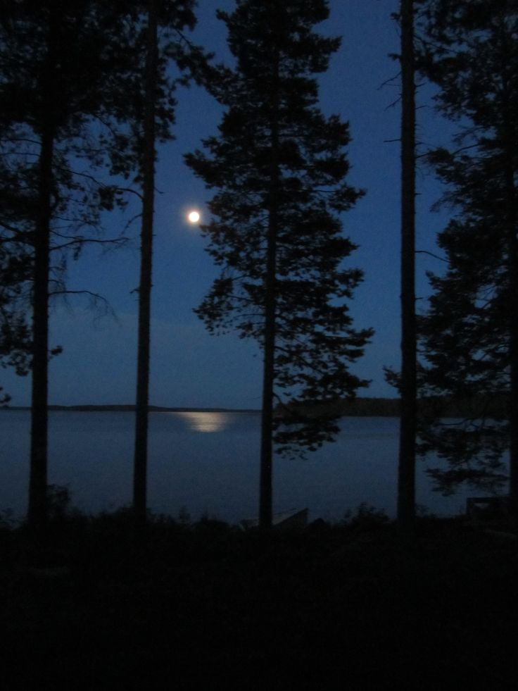 Lake Lentua and the full moon on july 2013, in Kuhmo Finland by Raija Forsström
