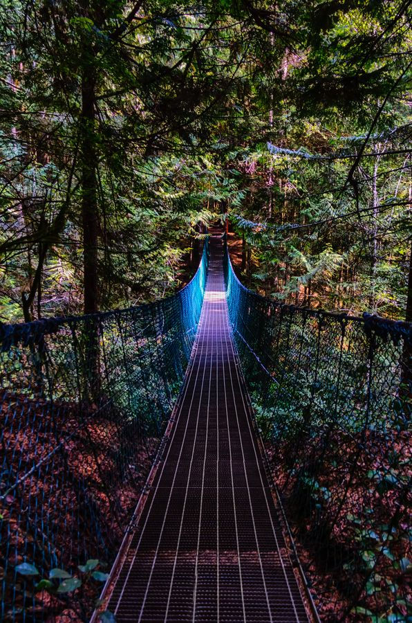 Glow suspension bridge on the Juan de Fuca trail, west coast of Vancouver Island, BC, by Carrie Cole