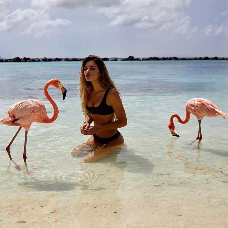 фламинго картинки и человек мне