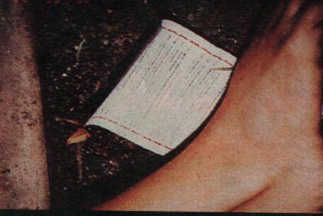 Menu of Mezzaluna under Nicole s feet.