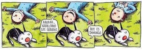 por Ricardo Siri Liniers  http://www.porliniers.com