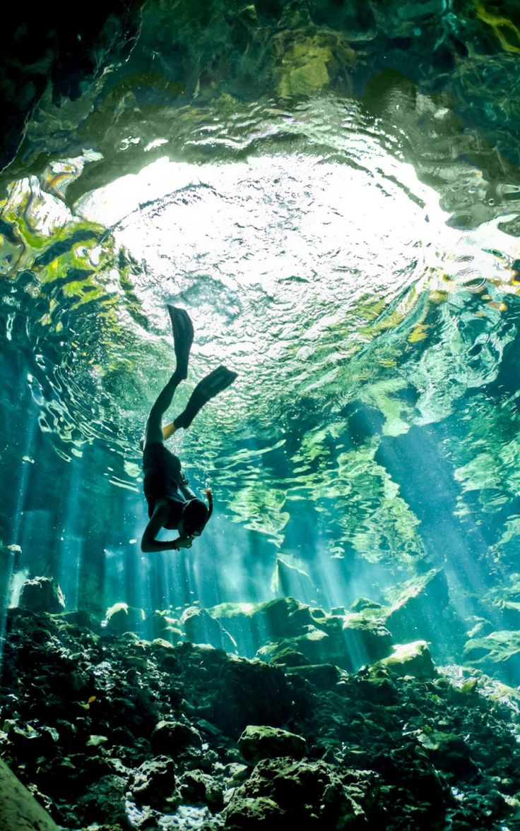 Free diving in the clear water of a Cenote in Mexico.