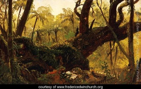 Rain Forest, Jamaica, West Indies - Frederic Edwin Church - www.fredericedwinchurch.org