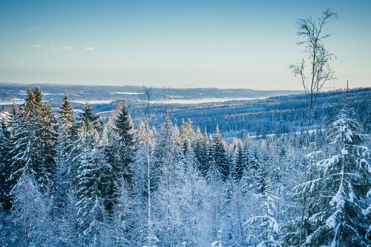 Vy från toppen av Ekeby - Ski Sunne - photo by jeppeblomgren.se