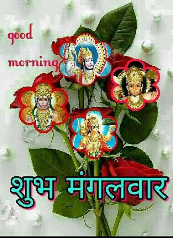 Pin By Narendra Pal Singh On Mangal Good Morning Wallpaper