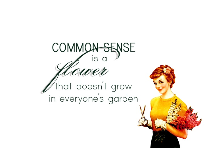 Best 25+ Common Sense Quotes Ideas On Pinterest