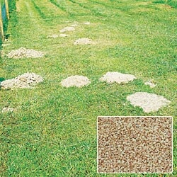Gopher Killing Plants Mole-Relief™ Mole Re...