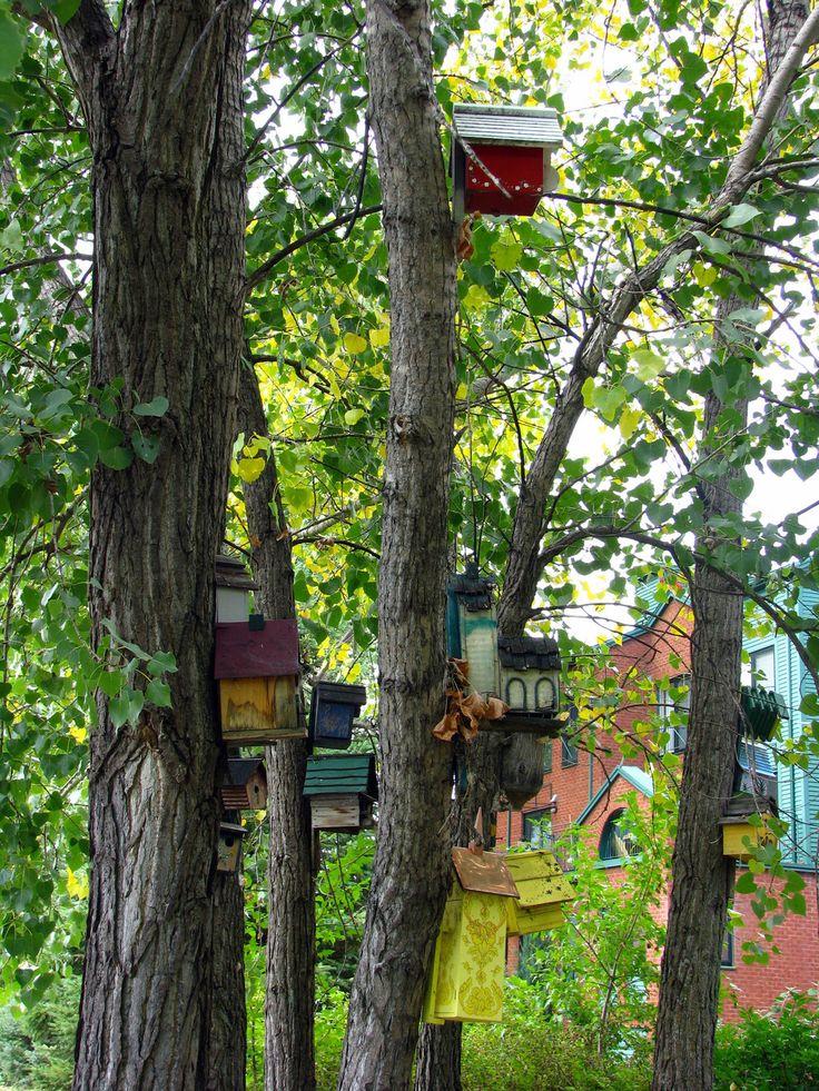Home & Garden : Cabanes à oiseaux