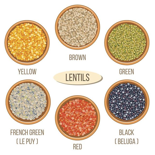 Before we get into how to cook lentils, we should talk about the different types of lentils.