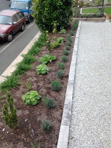 now the lime chip path is in, and the plants are getting established
